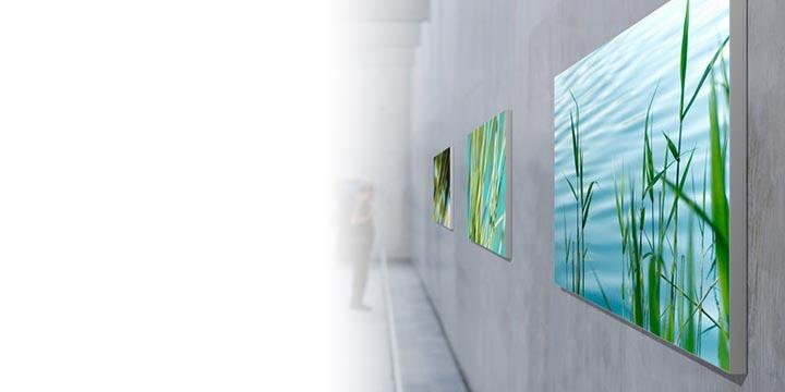Frame da parete